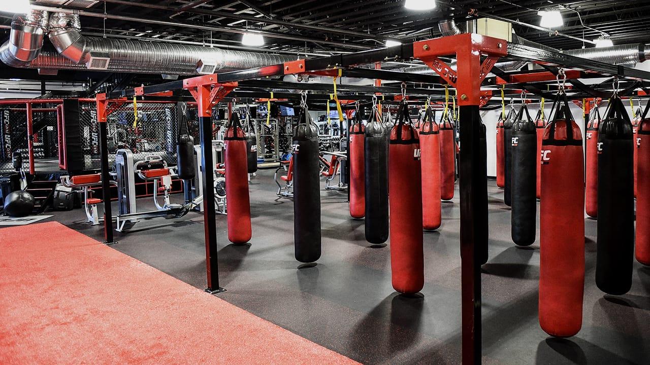 Ufc Gym Philippines Train Different
